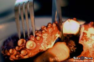 sitanenaweb-blog-galicianoctopus4
