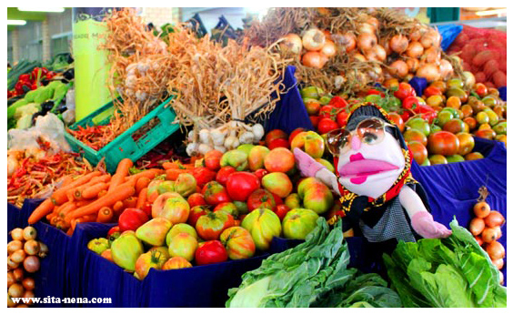 sitanenaweb-blog-marketcover