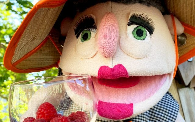 Raspberry (hindbær) // Season: Summer ☀️ & Autumn 🍂