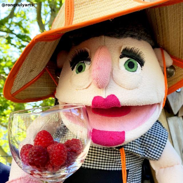 Raspberry (hindbær) // Season: Summer ☀️