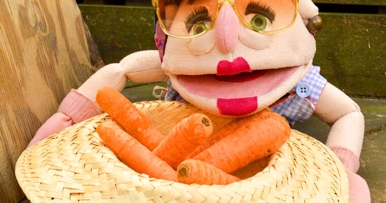 carrots (gulerødder) // Season: all year round ❄️🌼☀️🍂